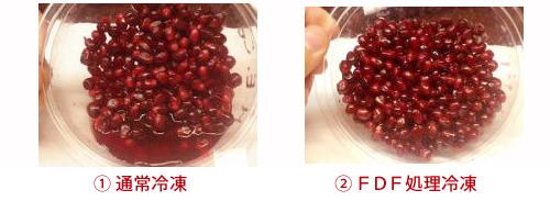 FDF処理で冷凍されたザクロ