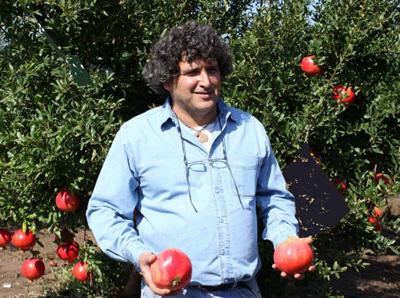 プリウトザクロ果樹農園の農園主は、ドロール・ミズラチさん